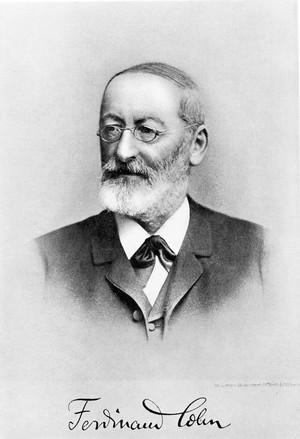 view Portrait of Ferdinand Julius Cohn, vignetted head and shoulders, autographed Ferdinand Cohn