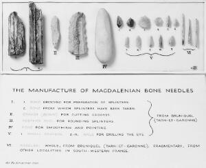 view The manufacture of Magdalenian bone needles. Showing the bone from which splinters have been taken, gravers, hone, toothed tool for rounding splinters, and finished needles.