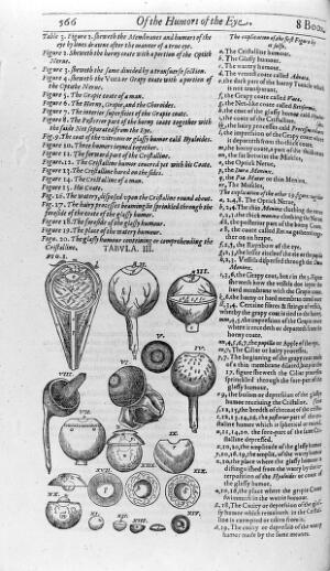 view Eye illustration, 17th century