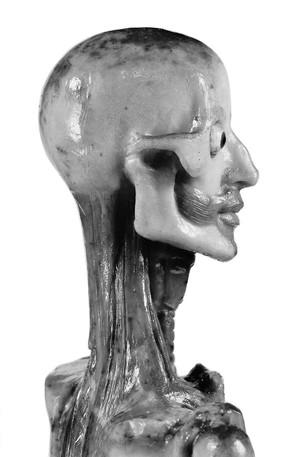 view Anatomical figure in wax, Italian, 18th century.