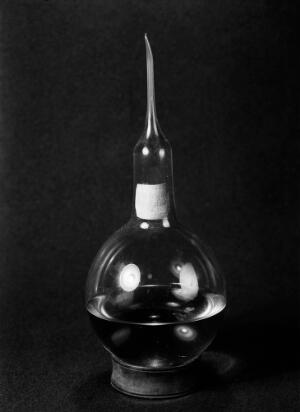 view Flask used by Pasteur