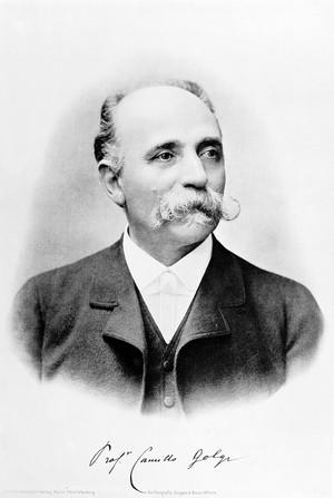 view Portrait of Camillo Golgi