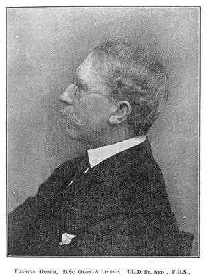 view Portrait of Francis Gotch