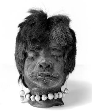 view A shrunken head, Jivaro Indian, Ecuador, S.America. Short hair, necklet and ear pendants of coix seeds. Lips sewn together, no threads hanging.