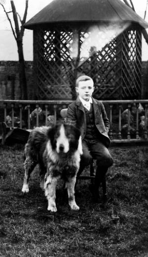 view Portrait of Sir Allen Daley as a boy at Hardy College, Bootle