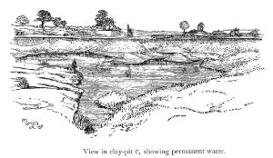 view Clay pit showing permanent water, Herts/Beds.