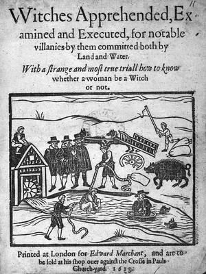 view Witches apprehended..., 1613