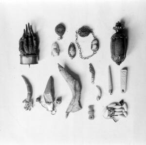 view Spanish lantern; animal products. Bone objects (including necklace for teething); small mammal's jawbone; 2 salt-codfish jawbones, cock's spur, bezoar, fishes earbones, and equine 'chetsnuts', badges paw.