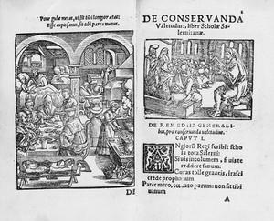 """view """"Regimen sanitatis..."""", 1553: woodcuts"""