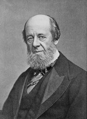 view Portrait of William Bird (1832-1902)