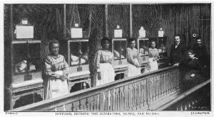 view Lion Incubator in use attended by Dr. Lion, 1896