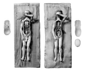 view Anatomical figures in ivory; 1 male and 1 female.