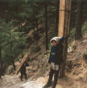 view Nepal; foot transport in the Khumbu, 1986. Two young Sherpas carry planks of wood up to the village of Kunde (altitude 3600 metres). Wearing boots which are barely held together and cast-off clothing from Western trekkers, these men transport building materials up a precipitous track.