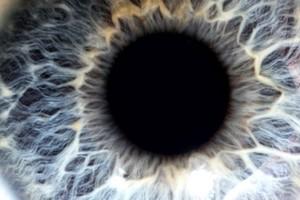 view Human eye with blue iris
