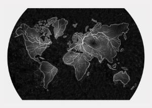 view World map in the form of an FFA of the retina