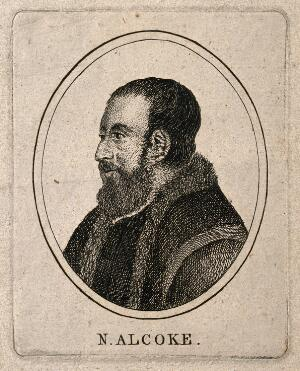 view Nicholas Alcoke. Etching after B. Baron after H. Holbein.