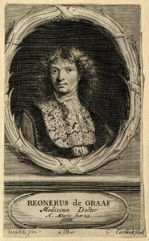 view Reinier de Graaf. Line engraving by G. Edelinck and J. Edelinck, 1666, after H. Watélé.