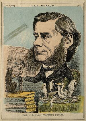view Thomas Henry Huxley. Coloured wood engraving, 1870.