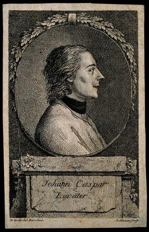 view Johann Caspar Lavater. Etching by Schleuen after B. Rode.