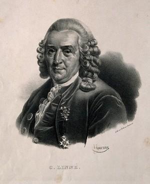view Carolus Linnaeus. Lithograph by P. R. Vignéron.