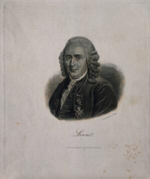 view Carolus Linnaeus. Line engraving by G. F. L. Jaquemot.
