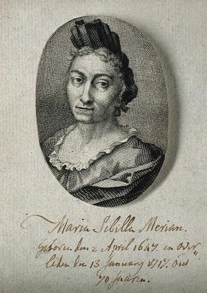 view Maria Sybilla Merian. Line engraving.