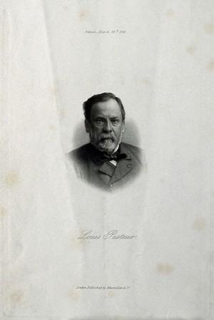 view Louis Pasteur. Etching, 1891, after Nadar.