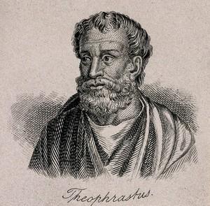 view Theophrastus. Line engraving.
