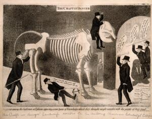 view Dr Barclay's advocation to the proposed professorship of comparative anatomy supported and opposed: represented by him riding the skeleton of an elephant into the University of Edinburgh. Etching by J. Kay, 1817.
