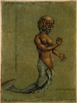 view A mermaid, with a measuring scale. Colour aquatint by A. Gautier D'Agoty, 1757.