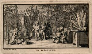 view Putti study the plants in a botanical garden; representing botany. Etching by B. Picart, 1729, after himself.