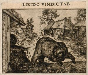 view A bear overturns a barrel and is stung by bees; representing Aesop's fable. Etching by C. Murer after himself, c. 1600-1614.