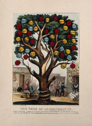 view The tree of intemperance, showing diseases and vices caused by alcohol. Coloured lithograph, 18--.
