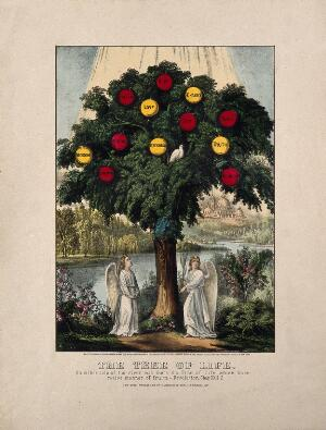 view A tree bearing apples labelled with virtues; representing the life of Christian virtue. Coloured lithograph, 1870, after J. Bakewell, 1771.
