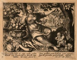 view A female figure with bowls of fruit and a monkey; Eve picks the apple from the tree of knowledge; representing the sense of taste. Engraving by N. de Bruyn after M. de Vos.