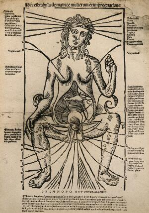 view A seated female figure with a dissected abdomen. Photograph after a woodcut, ca. 1525-1530.