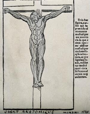 view A crucified écorché. Process print after a woodcut, 1541.