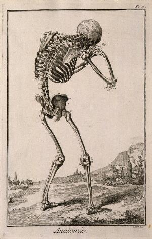 view A human skeleton, seen from the back, bent forward with his hands clasped to his skull, after Vesalius. Engraving by Benard, late 18th century, after a woodcut, 1543.