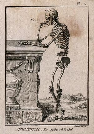 view A human skeleton, leaning against a tomb, after Vesalius: lateral view. Engraving by Benard, 1779, after a woodcut, 1543.