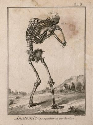 view A human skeleton, seen from the back, bent forward with his hands clasped to his skull, after Vesalius. Engraving by Benard, 1779, after a woodcut, 1543.