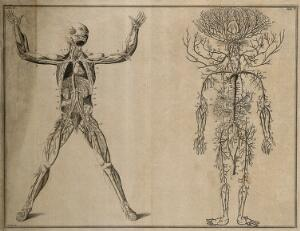 view The course of the veins and the arteries through the body (Table IV), after Eustachius; the arterial system (Table V), after Cowper in Drake. Etching by I. Basire, 1743.