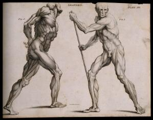 view Two écorchés, one walking with the aid of a staff grasped with both hands, seen from the left side; the other walking with hands fastened (?) behind back, seen from the right side. Line engraving by Kirkwood & Sons, after W. Cowper, 1790/1810.