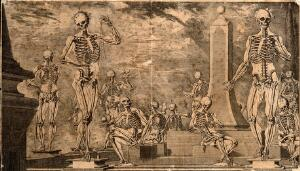 view Fourteen human skeletons performing activities symbolic of life and death. Engraving, 1740 or 1780, after C. Martínez, ca. 1680 (?).