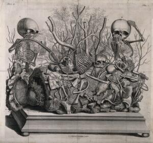 view Human foetuses in Frederik Ruysch's museum. Engraving by C. Huyberts, ca. 1709.