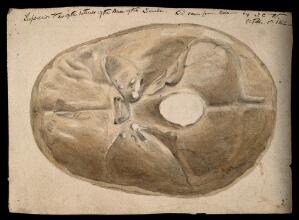 view Interior of the base of the human skull. Watercolour and pencil drawing, by J.C. Whishaw, 1852.