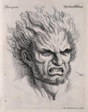 view Head of a man with hair raised, expressing despair. Engraving by M. Engelbrecht (?), 1732, after C. Le Brun.