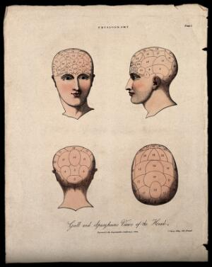 view The human head, divided according to the system of phrenology. Coloured lithograph by C. Ingrey, 1824.