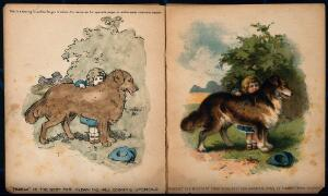 view A little boy standing by his large dog; advertising Sparkla cleaning product and Nubolic soap. Lithographs by A. Reeve.