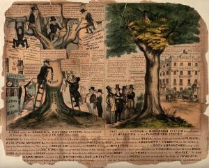 view Patient suffering under conventional medicine compared with health via Morisonian alternative medicine; represented by trees, one bloated and dying under the varied administration of conventional doctors and the other drained of impurities and healthy. Coloured lithograph.