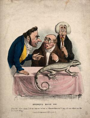 view Two men with a physician, discussing the chameleon on the table before them. Coloured lithograph after HH.